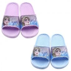 Frozen flip flops 13629